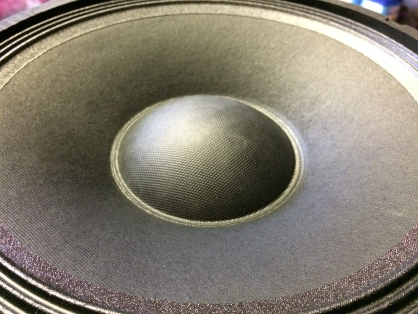 Lage tonen luidspreker unit van de EL-3100